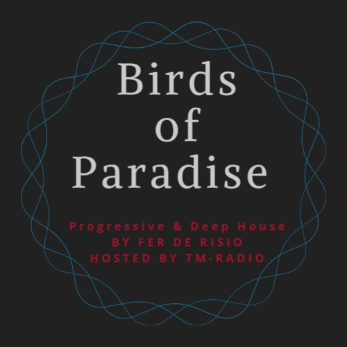 Birds of Paradise :: Episode aired on May 22, 11pm banner logo