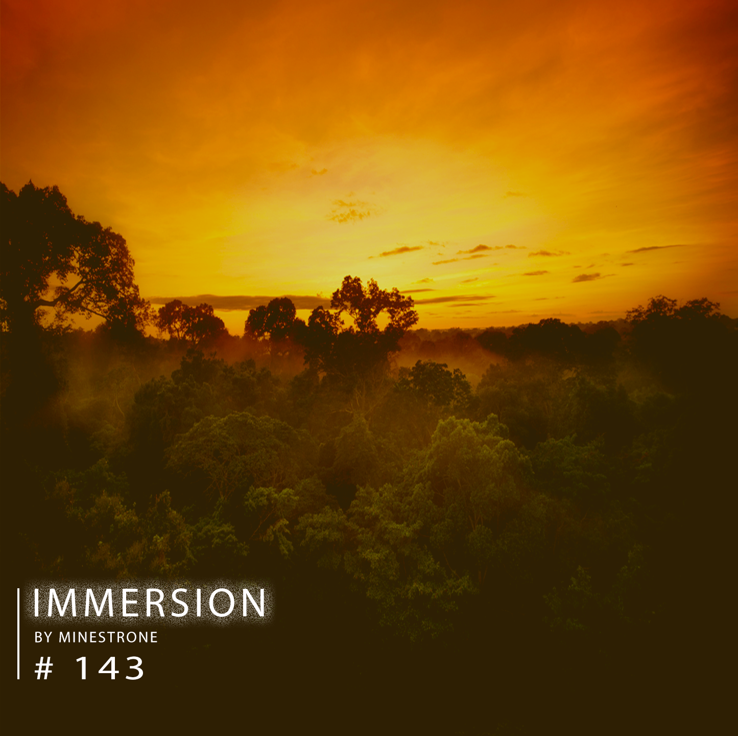 Immersion :: Episode 143 (aired on March 2nd, 2020) banner logo